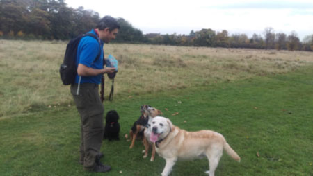pet sitters liverpool